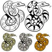 Snake Drawing — Stock Vector