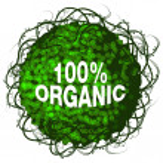 One Hundred Percent Organic Shrub Icon — Stock Vector #44835409