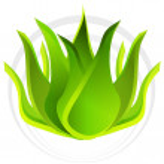 3d Aloe Vera Plant — Stock Vector #44838993