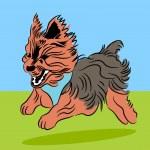Running Yorkie Dog — Stock Vector #45235631
