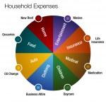 Household Expenses Chart — Stock Vector