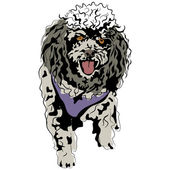 Poodle Sketch — Stock Vector