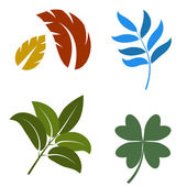 Leaves Set — Stock Vector