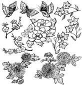 Japanese flowers. — Stock Vector