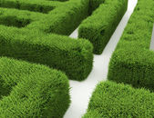 Grass maze — Stock Photo