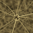 Stock Photo: Brain neurons and nervous system