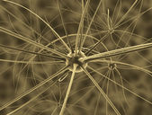 The brain neurons and nervous system — Stock Photo