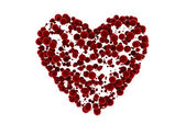 Heart symbol shaped from many small velvet spheres — Stock Photo