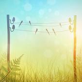 Rural Landscape — Stock Vector