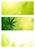 Green Eco Banner Collection — Stock Vector
