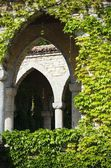 Arch With Leaves — Stock Photo