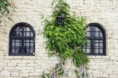 Old Stone Wall With Windows — Stockfoto