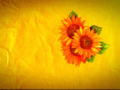 Sunflowers in yellow background — Stock Photo