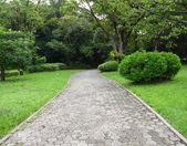 Zahradní cesty pěšky ve veřejném parku do lesa. — Stock fotografie