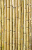 Old bamboo wall of local house. — Stock Photo