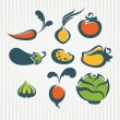 Vector collection of vegetables images on striped background — Stock Vector