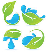 Fresh green leaves and water drops signs and symbols — Stock Vector