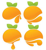 Fresh stylized orange fruits, stickers and emblems — Stock Vector