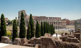 Colosseum backview from Forum — Stock Photo