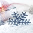 Cristmas decoration — Stock Photo #13778985