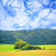 Stock Photo: Cloudy day in nature