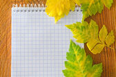 Autumn Leaves and note — Stock Photo