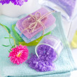 Aroma sea salt and soap - Foto Stock