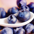 Blue berry — Stock Photo #14309385