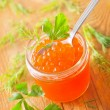 Salmon caviar — Stock Photo #14310083