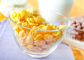 Healthy Breakfast-Cornflake s and Milk — Stock Photo