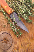 Thyme spice — Stock Photo