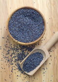 Poppy seed — Stock Photo