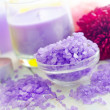 Violet sea - Stock Photo