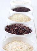 Different kind of raw rice, raw rice in the white bowls — Stock Photo