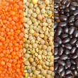 Different kind of beans - Stock Photo
