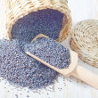 Stock Photo: Poppy seed