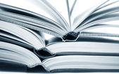 Otworzyć książki — Zdjęcie stockowe
