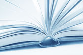 Abrir libros — Foto de Stock