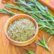 Stock Photo: Dry rosemary