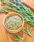 Dry rosemary — Stock Photo