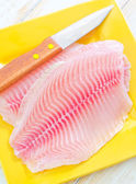 Raw fish — Foto Stock