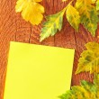 Note and leaves on wooden background — Stock Photo
