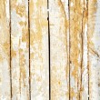 wooden background — Stock Photo #24295359