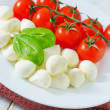 Mozzarella — Stock Photo #25117429