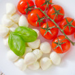 Mozzarella - Foto de Stock