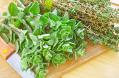Oregano with thyme — Stock Photo
