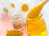 Pollen and honey — Stock Photo