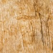 wooden background — Stock Photo #25924165