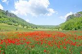 Mountain in Crimea — Stock Photo