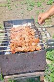 Fried Kebab — Stock Photo